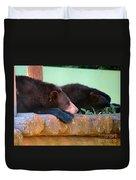 Bear Nap Duvet Cover