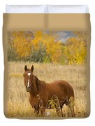 Beautiful Chestnut Horse Duvet Cover