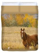 Beautiful Grazing Horse Duvet Cover