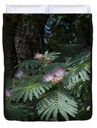 Beautiful Alabama Mimosa Silk Tree Duvet Cover