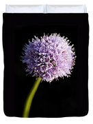 Beautiful Purple Flower With Black Background Duvet Cover