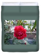 Beautiful Red Rose In A Small Garden Duvet Cover