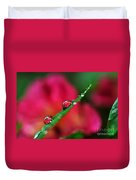 Beauty After The Rain Duvet Cover