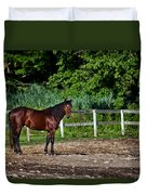 Beauty Of A Horse Duvet Cover