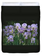 Bed Of Irises, Provence Region, France Duvet Cover