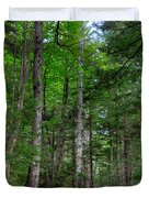 Beech Mountain Trail Acadia Duvet Cover