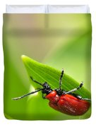 Beetle Duvet Cover