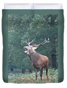 Bellowing Red Deer Stag Duvet Cover