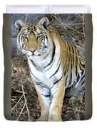 Bengal Tiger In Pench National Park Duvet Cover