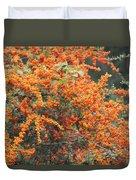 Berry Orange Duvet Cover