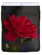 Betty's Red Rose II  Duvet Cover