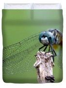 Big Eyes Blue Dragonfly Duvet Cover