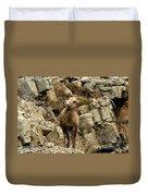 Big Horn On The Rocks Duvet Cover