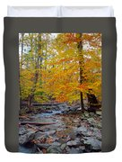 Big Hunting Creek Down Stream From Cunningham Falls Duvet Cover