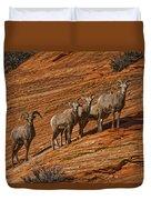 Bighorn Sheep, Zion National Park, Utah Duvet Cover