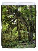 Bigleaf Maple Acer Macrophyllum Duvet Cover