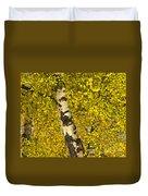Birch Forest In Finland Duvet Cover
