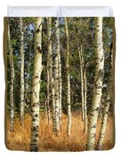 Birch Tree Abstract Duvet Cover