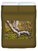 Birch Trees In Autumn Foliage Duvet Cover
