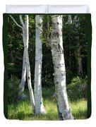 Birches On A Meadow Duvet Cover