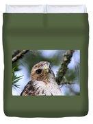 Bird - Red-tailed Hawk - Bashful Duvet Cover