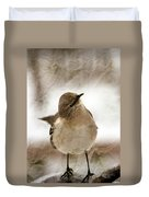 Bird In A Bag Duvet Cover by Skip Willits