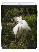 Bird Mating Display - Snowy Egret  Duvet Cover
