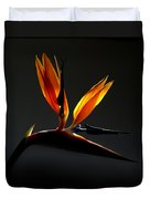 Bird Of Paradise 3 Duvet Cover