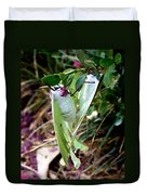 Birds And Bees And Luna Moths Duvet Cover