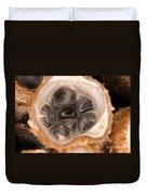 Birds Nest Fungus Duvet Cover