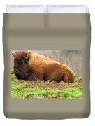 Bison At Rest Duvet Cover