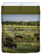 Bison Graze On Grasslands In The Park Duvet Cover