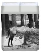 Black And White Hay Horse Duvet Cover
