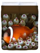 Black Anemonefish, Fiji Duvet Cover