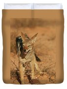 Black-backed Jackal Duvet Cover