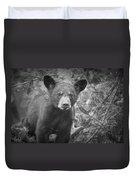 Black Bear Cub In A Pine Tree Duvet Cover