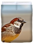 Black-chinned Sparrow Duvet Cover