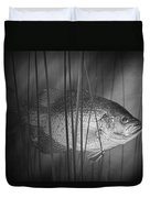 Black Crappie Or Speckled Bass Among The Reeds Duvet Cover
