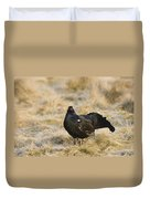 Black Grouse Displaying On A Lek Duvet Cover