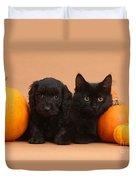 Black Kitten & Puppy With Pumpkins Duvet Cover
