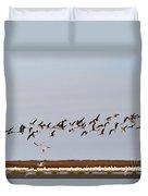 Black Skimmers In Flight Duvet Cover