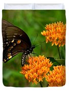 Black Swallowtail Visiting Butterfly Weed Din012 Duvet Cover