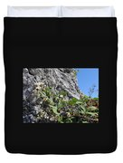 Blackberry On The Rock 04 Duvet Cover