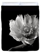 Blind Prickly Pear Cactus In Black And White Duvet Cover