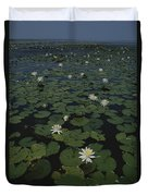 Blooming Water Lilies Fill A Body Duvet Cover