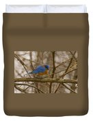 Blue Bird Perched On Willow Duvet Cover