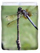 Blue Dasher Dragonfly Dancer Duvet Cover by Sabrina L Ryan