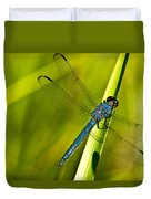 Blue Dragonfly 10 Duvet Cover