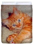 Blue-eyed Kitty Duvet Cover