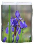 Blue Flag Iris - Dsc03987 Duvet Cover